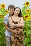 Muchacha y un hombre joven en el campo de girasoles Imágenes de archivo libres de regalías