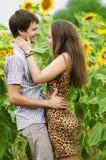 Muchacha y un hombre joven en el campo de girasoles Foto de archivo libre de regalías