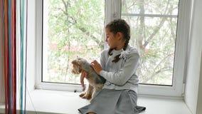 Muchacha y un perro la muchacha adolescente que sostiene un terrier de Yorkshire se sienta en el perro casero de la ventana almacen de video