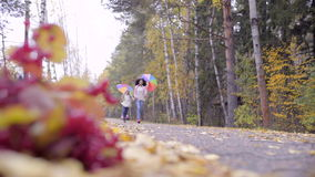 Muchachas adolescentes lindas que corren a través de bosque del otoño almacen de metraje de vídeo