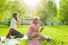 Muchachas adolescentes que se divierten en el parque - burbujas de jabón que soplan Fotos de archivo