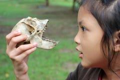Muchachas asiáticas con los huesos del mono Fotografía de archivo