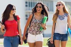 Muchachas bonitas del estudiante que se divierten en el campus Fotos de archivo