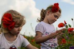 Muchachas con la amapola roja Foto de archivo libre de regalías