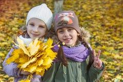 Muchachas con las hojas del amarillo del arce Foto de archivo libre de regalías