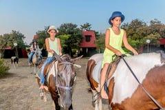 Muchachas con un sombrero en caballos de montar a caballo Imágenes de archivo libres de regalías