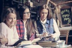 Muchachas de los estudiantes que aprenden junto imagen de archivo