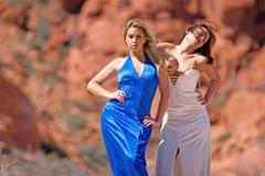Muchachas de moda atractivas Imagen de archivo
