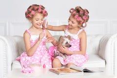 Muchachas de Tweenie en bigudíes de pelo con el perro Foto de archivo