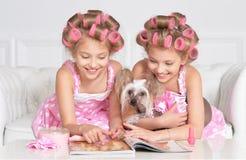 Muchachas de Tweenie en bigudíes de pelo con el perro Foto de archivo libre de regalías