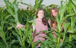 Muchachas del país en campo de maíz Imagen de archivo libre de regalías