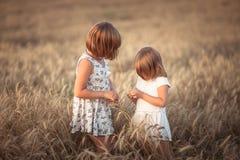 Muchachas divertidas que juegan con centeno en la puesta del sol, forma de vida fotografía de archivo libre de regalías