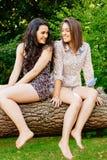 Muchachas divertidas que se sientan en un tronco Foto de archivo libre de regalías