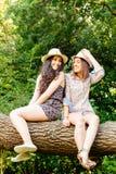 Muchachas divertidas que se sientan en un tronco Fotografía de archivo libre de regalías