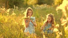 Muchachas en el prado del verano almacen de metraje de vídeo