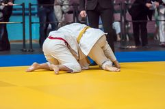 Muchachas en judo Fotos de archivo
