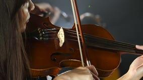 Muchachas en juego los violines en una composición en un cuarto Fondo negro del humo Cierre para arriba metrajes