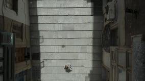 Muchachas encima de las escaleras Abejón con 90 grados del ángulo que levantan para arriba a través de la calle vieja hermosa, La almacen de video
