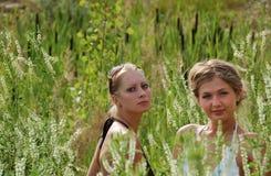 Muchachas entre la alta hierba Foto de archivo