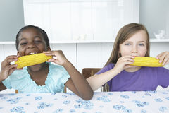 Muchachas multiétnicas que comen mazorcas de maíz Fotos de archivo libres de regalías