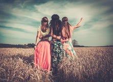 muchachas Multi-étnicas del hippie en un campo de trigo Fotos de archivo libres de regalías