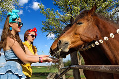 Muchachas que alimentan sus caballos Imágenes de archivo libres de regalías