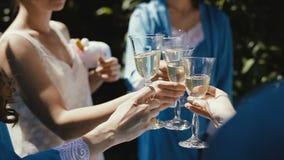 Muchachas que comen el vino que tuesta las copas de vino que tintinean sofisticadas cumpleaños del viaje de las vacaciones del dí almacen de metraje de vídeo