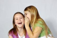 Muchachas que comparten una broma Imágenes de archivo libres de regalías