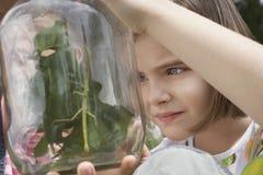 Muchachas que examinan insectos de palillo en tarro Imagen de archivo
