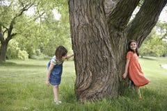 Muchachas que juegan escondite por el árbol Foto de archivo libre de regalías