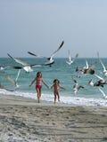 Muchachas que persiguen pájaros en la playa Imagen de archivo libre de regalías