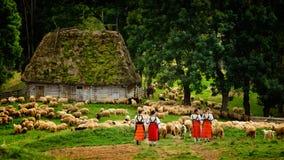 Muchachas rumanas jovenes en la montaña con la casa y las ovejas del pastor imagenes de archivo