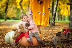 Muchachas sonrientes en el parque del otoño Imagen de archivo libre de regalías