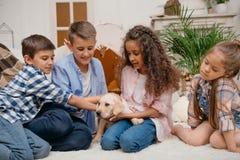 Muchachas y muchachos que juegan con el perrito de Labrador en casa Imágenes de archivo libres de regalías