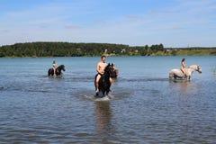 Muchachas y un individuo que nada a caballo en el lago Imágenes de archivo libres de regalías