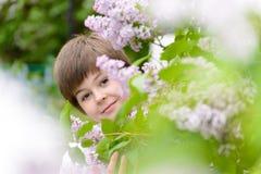 Muchacho 10 años de lilas florecientes cercanas Fotos de archivo