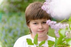 Muchacho 10 años de lilas florecientes cercanas Imagen de archivo libre de regalías