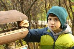 Muchacho adolescente al lado del alimentador del pájaro Foto de archivo