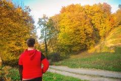 Muchacho adolescente atractivo que mira la naturaleza hermosa de la caída del otoño Foto de archivo