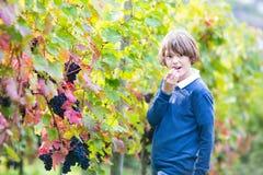 Muchacho adolescente de la edad en yarda hermosa de la vid del otoño Imágenes de archivo libres de regalías