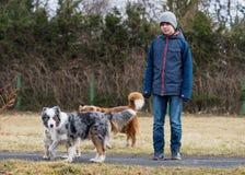 Muchacho adolescente que juega con el perro Imagen de archivo