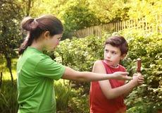 Muchacho adolescente y muchacha de los pares de los hermanos que pelean Imagen de archivo libre de regalías
