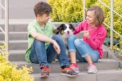 Muchacho adolescente y muchacha que juegan con el perrito Fotografía de archivo libre de regalías