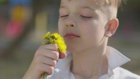 Muchacho adorable joven del retrato que huele una flor del diente de león en el parque almacen de video