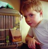 Muchacho con el pájaro del animal doméstico Fotos de archivo