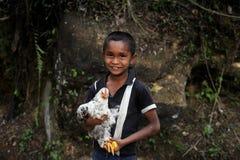 Muchacho con el pollo Imagenes de archivo