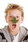 Muchacho con la hoja en su nariz Fotos de archivo libres de regalías