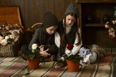 Muchacho con la muchacha en el vestido del vintage que se sienta en la tela escocesa en la caja mirada de las flores en potes Imagen de archivo libre de regalías