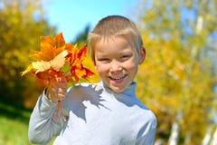 Muchacho con las hojas Imagen de archivo libre de regalías