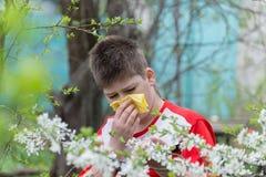 Muchacho con rinitis alérgica en jardín de la primavera Fotografía de archivo